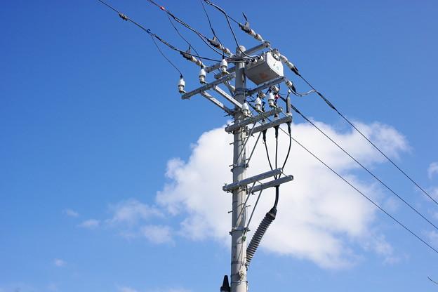 土地に電柱を設置していると毎年お金がもらえます!金額も発表!
